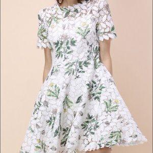 Chicwish brand new crochet lace dress
